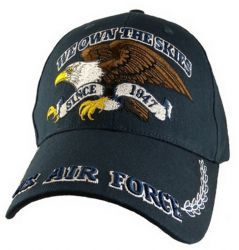 Бейсболка ВВС США U.S. Air Force We Own The Skies Cap